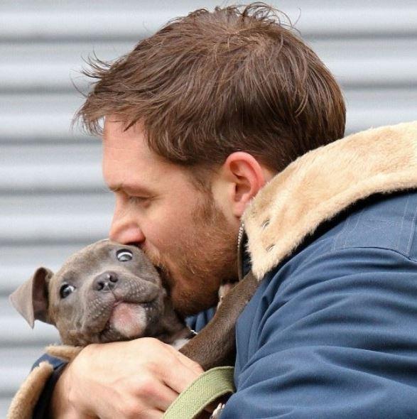tom-hard-puppy-27dec13-46