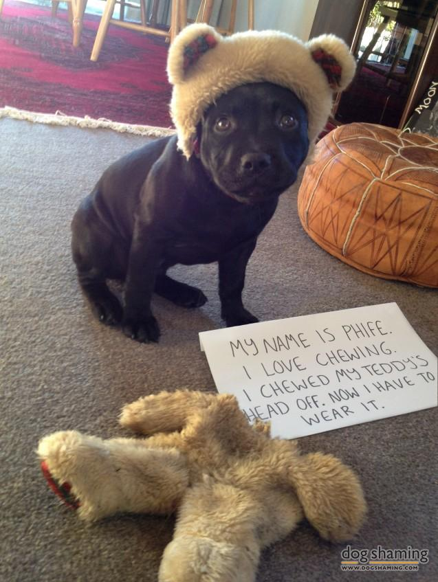 Phife-Dog-Shaming-637x847